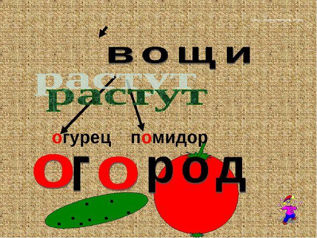 Овощи, огурец, помидор, огород огурец помидор