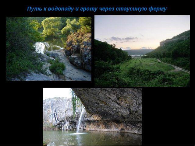 Путь к водопаду и гроту через стаусиную ферму