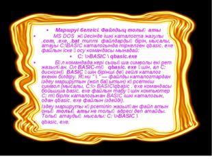 Маршруі белгісі. Файлдыц толық аты MS DOS жүйесінде ішкі каталогта жазулы .с