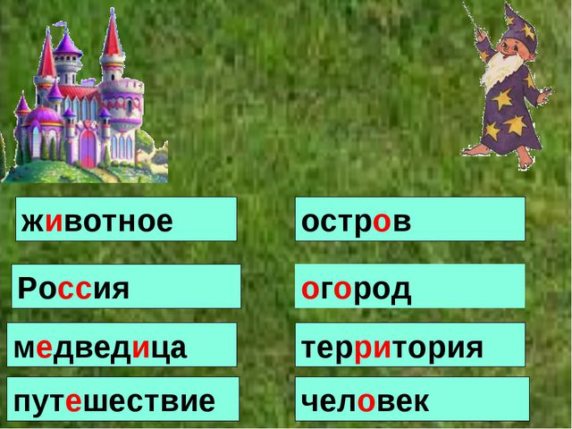животное остров огород человек медведица территория Россия путешествие