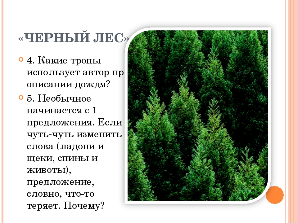 «ЧЕРНЫЙ ЛЕС»: 4. Какие тропы использует автор при описании дождя? 5. Необычно...