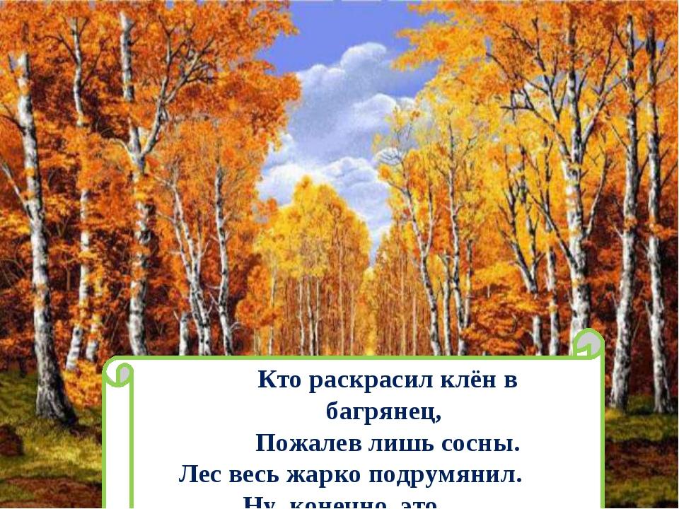 Кто раскрасил клён в багрянец, Пожалев лишь сосны. Лес весь жарко подрумянил....