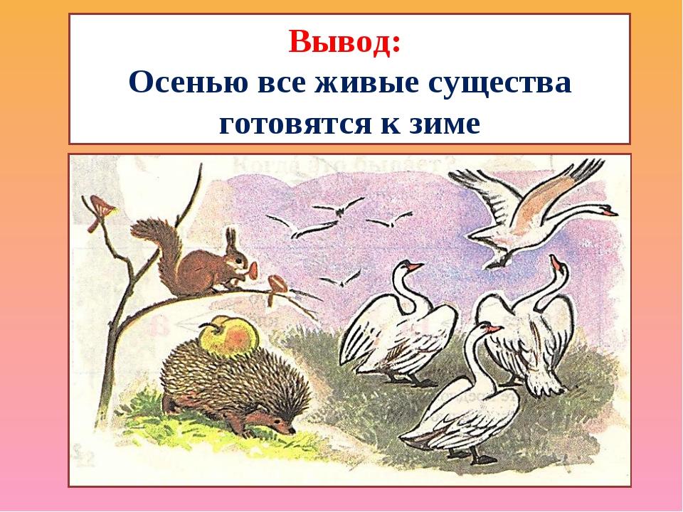 Вывод: Осенью все живые существа готовятся к зиме
