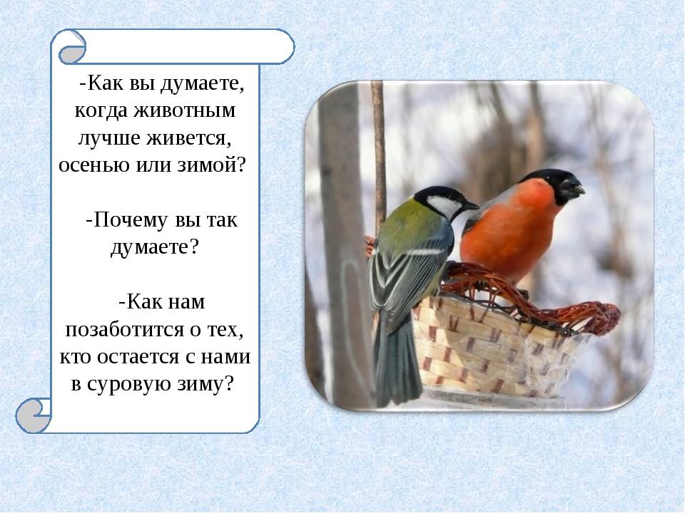 -Как вы думаете, когда животным лучше живется, осенью или зимой? -Почему вы т...