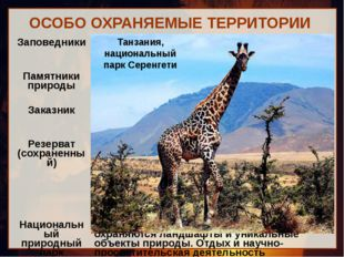 ОСОБО ОХРАНЯЕМЫЕ ТЕРРИТОРИИ Танзания, национальный парк Серенгети Заповедники
