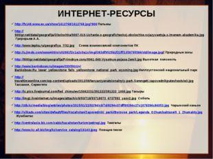 ИНТЕРНЕТ-РЕСУРСЫ http://fs148.www.ex.ua/show/1612768/1612768.jpg?800 Пальмы h
