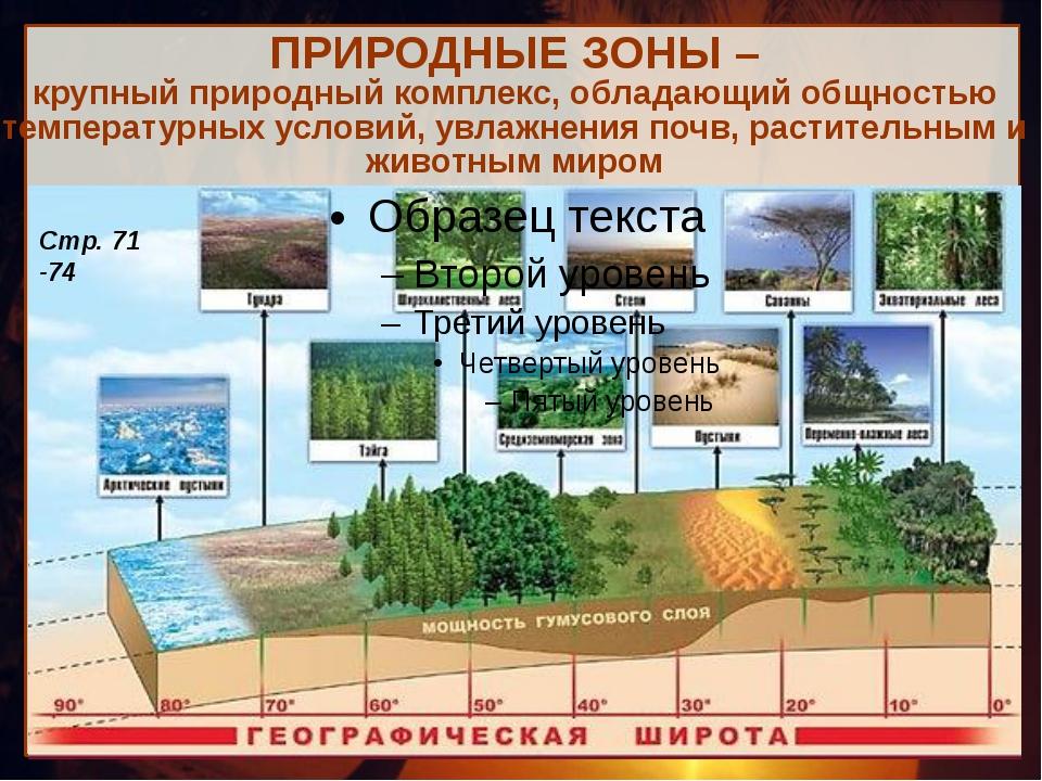 ПРИРОДНЫЕ ЗОНЫ – крупный природный комплекс, обладающий общностью температурн...