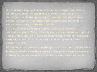 Жительница города Елена Кочина 15 ноября записала в своём дневнике: «Надвигае