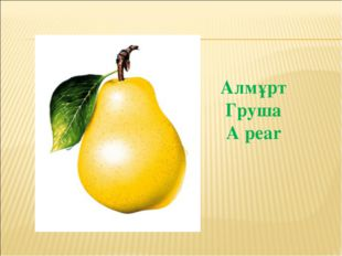 Алмұрт Груша A pear
