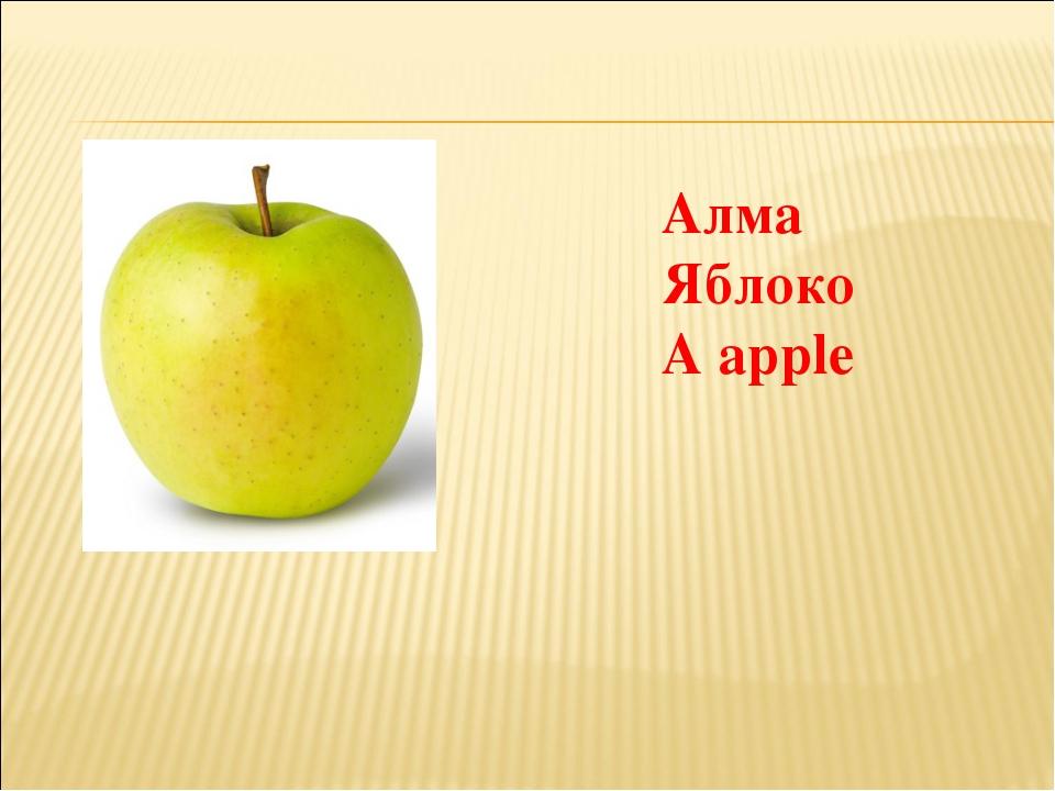 Алма Яблоко A apple