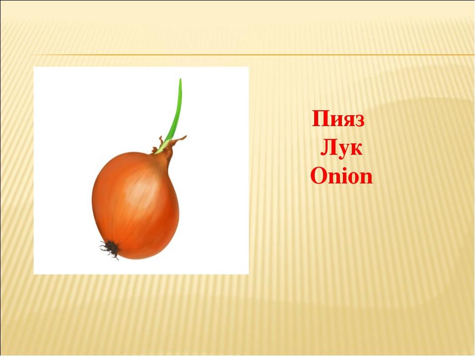 Пияз Лук Onion