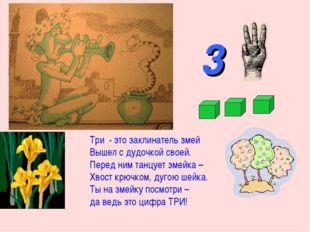 3 Три - это заклинатель змей Вышел с дудочкой своей. Перед ним танцует змейка