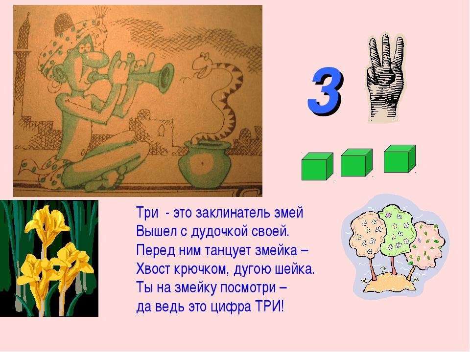 3 Три - это заклинатель змей Вышел с дудочкой своей. Перед ним танцует змейка...