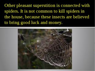 Other pleasant superstition is connected with spiders. It is not common to ki