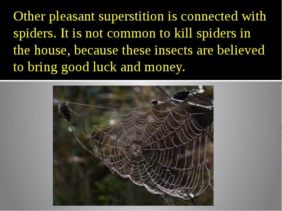 Other pleasant superstition is connected with spiders. It is not common to ki...
