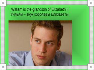 William is the grandson of Elizabeth II Уильям – внук королевы Елизаветы
