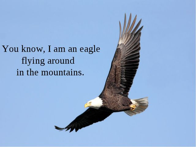 You know, I am an eagle flying around in the mountains.