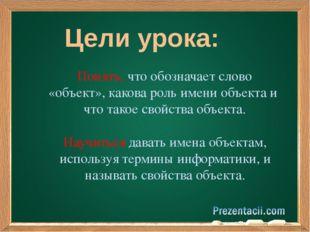 Цели урока: Понять, что обозначает слово «объект», какова роль имени объекта