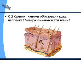 С 2 Какими тканями образована кожа человека? Чем различаются эти ткани?