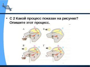 С 2 Какой процесс показан на рисунке? Опишите этот процесс.