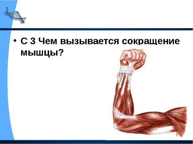 С 3 Чем вызывается сокращение мышцы?