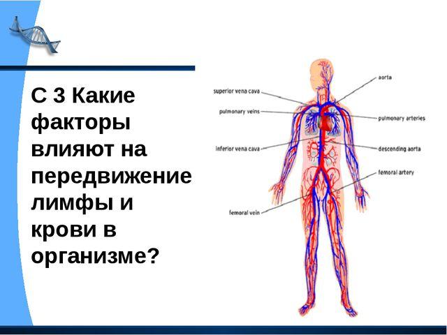 С 3 Какие факторы влияют на передвижение лимфы и крови в организме?