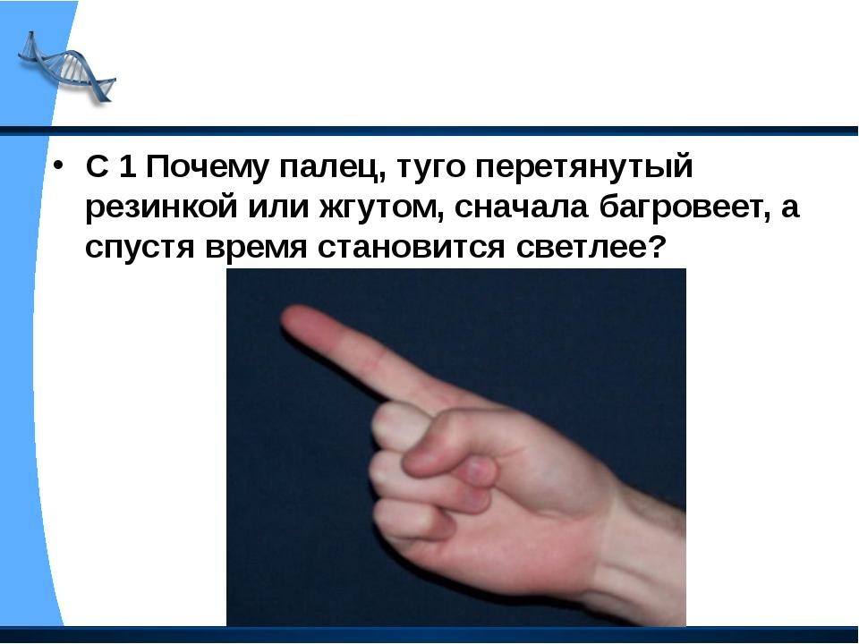 С 1 Почему палец, туго перетянутый резинкой или жгутом, сначала багровеет, а...