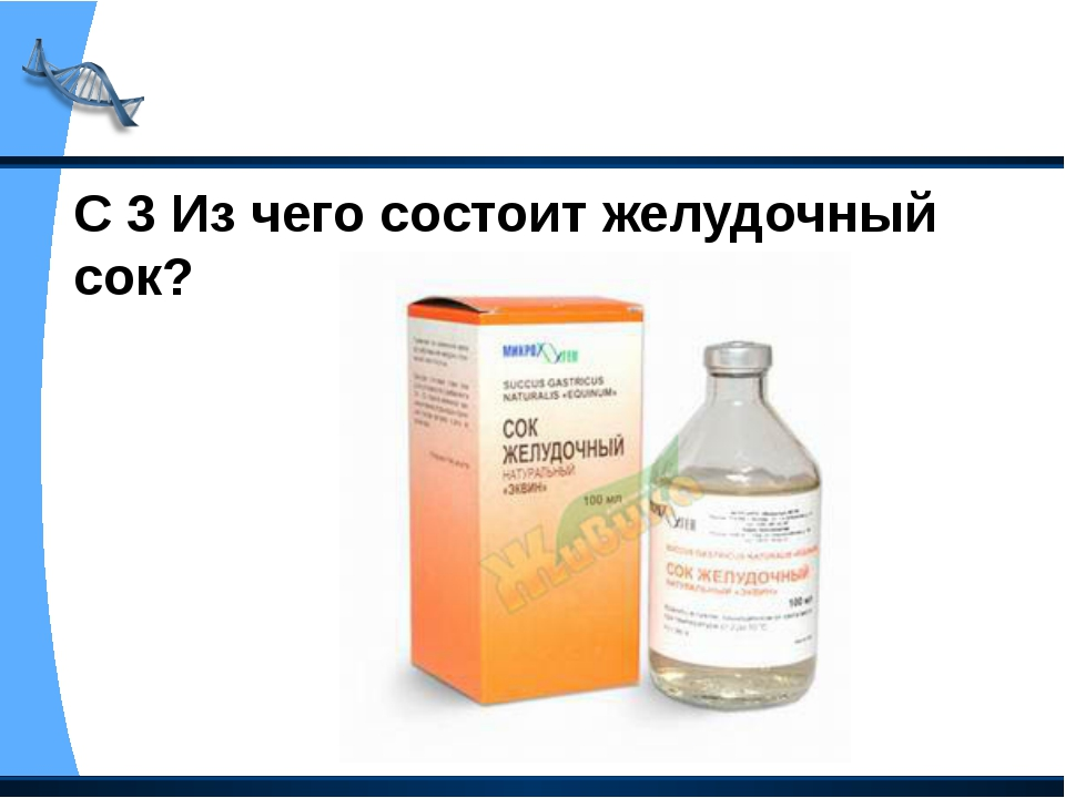 С 3 Из чего состоит желудочный сок?