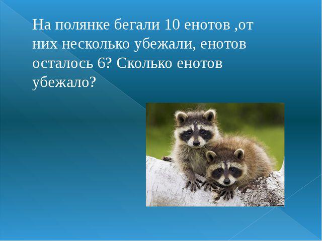 На полянке бегали 10 енотов ,от них несколько убежали, енотов осталось 6? Ско...