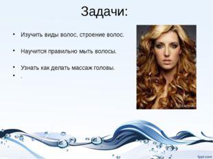 Задачи: Изучить виды волос, строение волос. Научится правильно мыть волосы. У