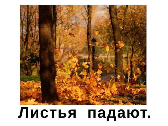 Листья падают.