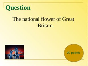 Question The national flower of Great Britain. 20 points