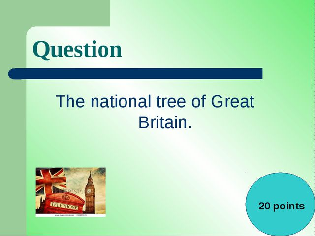 Question The national tree of Great Britain. 20 points