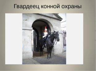 Гвардеец конной охраны