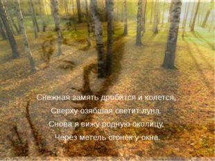 Снежная замять дробится и колется, Сверху озябшая светит луна. Снова я вижу