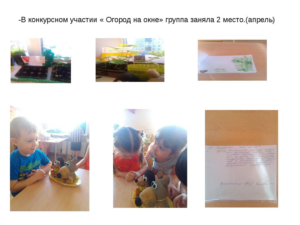 -В конкурсном участии « Огород на окне» группа заняла 2 место.(апрель)