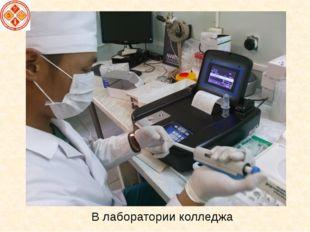 В лаборатории колледжа