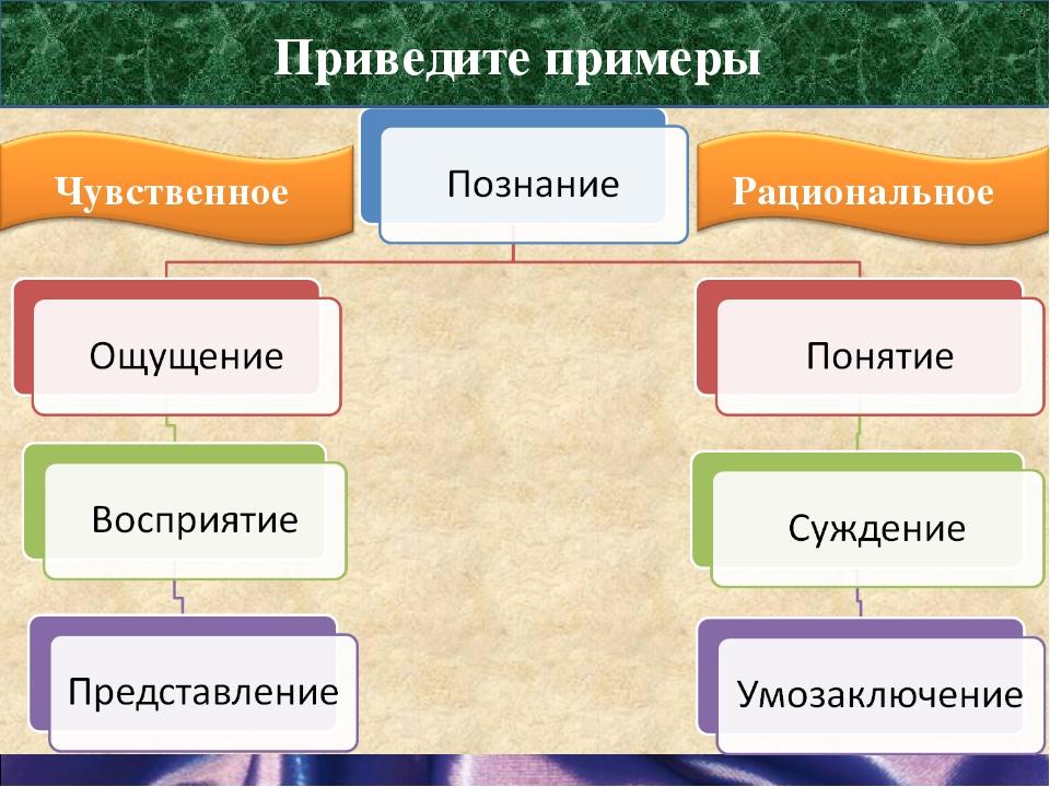 Формы познания Приведите примеры