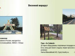 Весенний маршрут Русскинские (деревня в России, находится в Сургутском районе