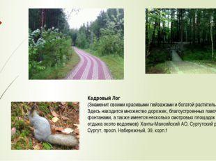 Кедровый Лог (Знаменит своими красивыми пейзажами и богатой растительностью.