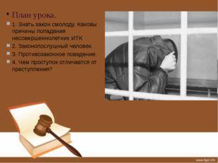 План урока. 1. Знать закон смолоду. Каковы причины попадания несовершеннолетн