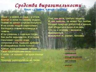 Средства выразительности  Язык – у камня, и язык – у стога Язык – у камня, и