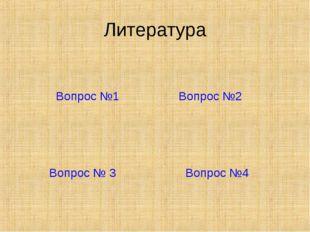 Литература Вопрос №1 Вопрос №2 Вопрос № 3 Вопрос №4