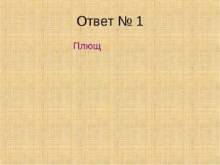 Ответ № 1 Плющ