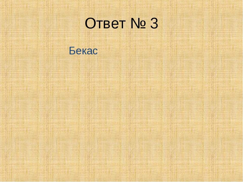 Ответ № 3 Бекас