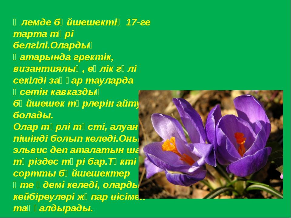 Әлемде бәйшешектің 17-ге тарта түрі белгілі.Олардың қатарында гректік, визант...