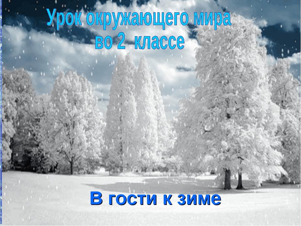 В гости к зиме