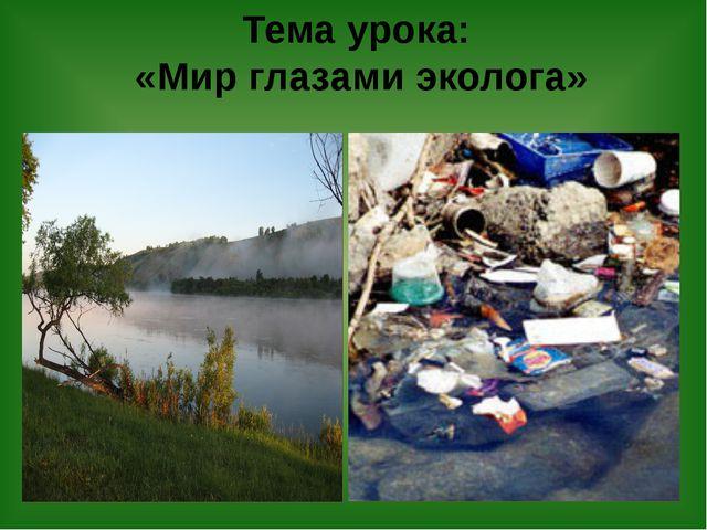 Тема урока: «Мир глазами эколога»