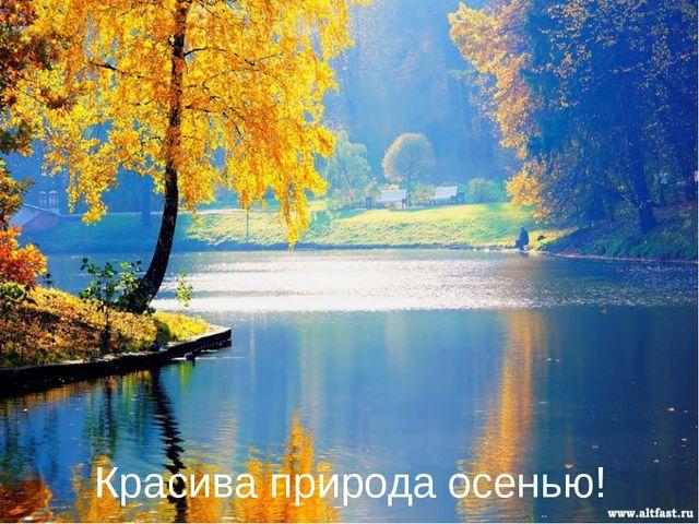 Красива природа осенью!