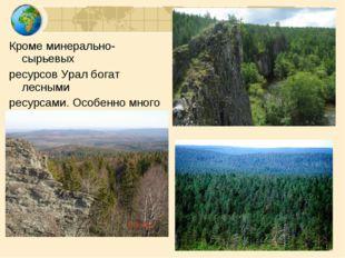 Кроме минерально-сырьевых ресурсов Урал богат лесными ресурсами. Особенно мно